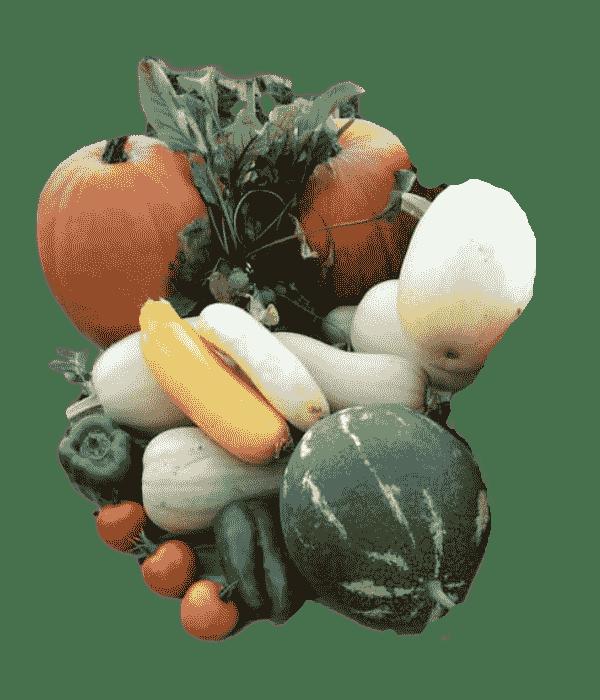 Lynda Carpenter Nutrition picture